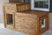 INTERIER / dog house