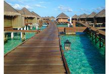 >> Maldives