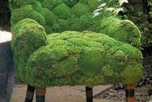 Garden Idea's / by Sandy Cordes Nelson