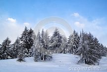 Snow on dreamstime / All these photos can be bought full size and with no watermark -  Follow the link