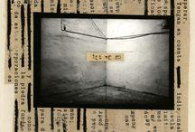 photographic installation