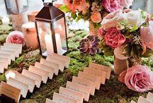 Wedding / by Janine Thompson