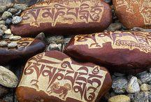 Stones / Stones are alive