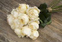 Garden roses for weddings