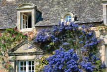 Cottages & Gardens ♡