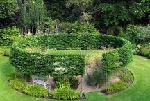 tech hub garden