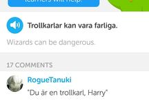 My Insta photos #onceapotterheadalwaysapotterhead even if I am learning #swedish  #duolingo #harrypotterreference