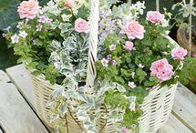 Flower-kvetinové dekorácie