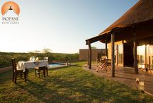 Mopane Bush Lodge / We've just completed some of our new units which include all the best furnishings and comfort such as extra large beds, Nespresso makers, bath robes, and private pools... All this along side the stunning views of the bushveld at Mopane Bush Lodge and being the ideal location next to the Mapungubwe National Park makes your trip over a key part of visiting South Africa.