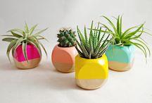 Plantas artesanato