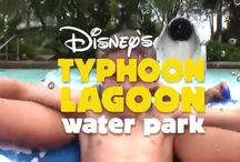 Water Parks at Walt Disney World