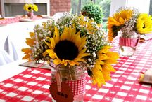 ❥ BBQ Party / Barbecue Themed Party Ideas