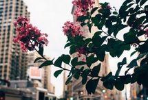 New york city♥
