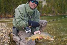 Wyoming Flyfishing / All things Wyoming Flyfishing including How-to, Flyfishing reports, Wyoming rivers and lakes