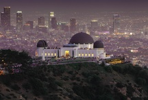City of Angels / my favorite LA spots & places I want to visit next time / by Casey Ellis