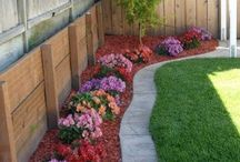 All About Gardens / All you need know about creative garden designs will be published on this board as well as gardening ideas.