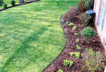 Curb Appeal / by Katie Lee Fisher