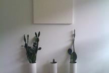 Plants / by Ayesha Akhtar