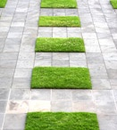 garden : PARKING space / Driveway, parking, garage... well I am looking for paving ideas, fence ... I love a mix of metal, concrete, grass and pebble. / by TheDudette