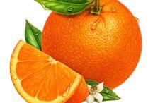Ovocie (fruit) / pekné obrázky ovocia