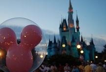 Max is going to Disneyland! / by Maren Custer
