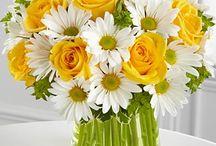 kytice květů