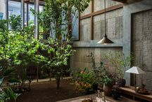 Architecture & Plants