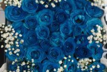 Bunga box / Flower box bloom BOX / Rangkaian BUNGA ucapan dalam box ini menggunakan fresh flower