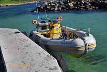 Our Boat Seahorse / Our boat is a 6.2 metre Gemini rubber duck, and is rated to carry seven divers and a skipper.