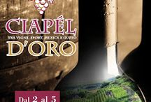 Ciapél d'oro: vini e piatti tipici Valtellinesi dal 2 al 5 Luglio Castione Andevenno (SO)