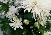 Kukka asetelma