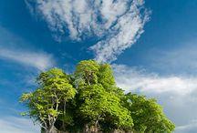 Fura szigetek/Exciting islands