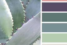 Color Palette Inspiration