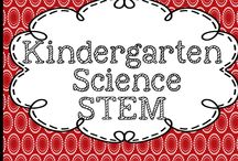 Della Larsen's Class Science in Kindergarten STEM / Great science activities for science and STEM in kindergarten