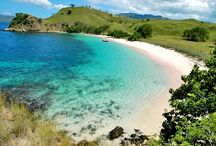 komodo pinck beach