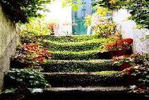 Haaveloma / Haaveiden lomasuunnittelua, vaellukset, puutarhat, kaupungit ym
