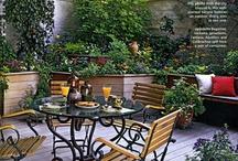 Garden party / by Jess Tea