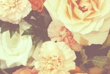 design - florals