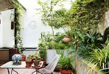 Courtyard love / Living outdoors