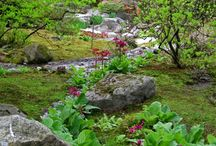 Gardens to visit in Seattle