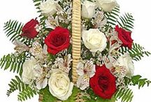 Buy Flowers Basket Online and Send it to Baroda, India / Wishes are very important on all occasions and being away from loved ones is no reason why one cannot be a part of their celebrations. If you think you cannot personally visit your family and friends, then be a part of their celebration by sending gifts from FlowersCakesOnline.com.