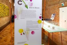 Crafts Council: Bud to Bloom / Bud to Bloom presents contemporary craft works inspired by the natural world and life cycle of plants, selected from the Crafts Council Collection. / by Crafts Council