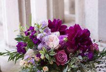Color || Passion Purple