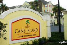 Cane Island Resort / Cane Island es una comunidad cerrada en Kissimee, Florida, y tan solo pocos minutos cerca a Disney en auto, ideal para familias pequeñas.