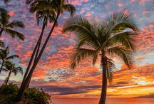 We Discover: Maui / http://platinumtravelcorp.com/wediscover/maui/
