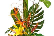 tropical party or hawaiian wedding