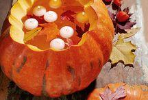 autumn / by Lakshmi Arvind