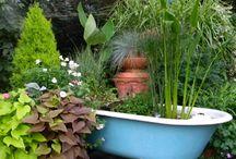 Gardens - water features