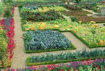 Garden / by Kari V. {Sunshine In My Pocket}