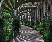 d -- gardens -- shade